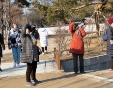 경복궁(201003)
